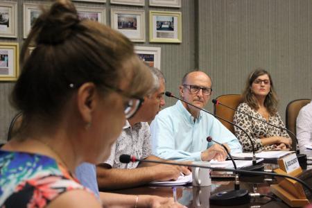 Vereadora Neca Dalmoro é presidente da Comissão de Justiça e Redação da Casa