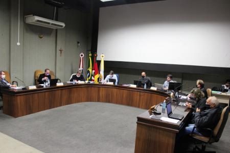 Vereadores participaram de sessão presencial