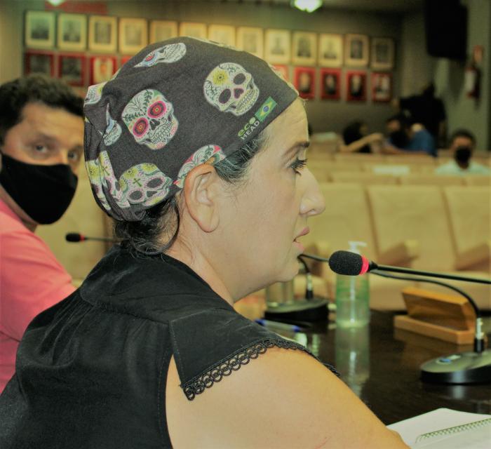 Pedido de vista adia votação de Projeto sobre parklets